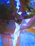 Memorial Fountain Water