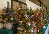 Festival of Trees