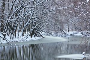 Sudden Winter