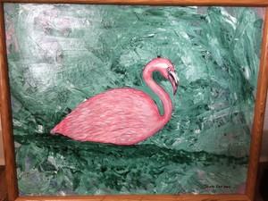 Flamingo Cruise
