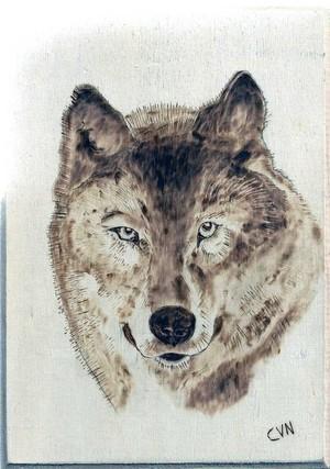 WOLF A