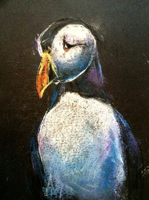Puffin Drawing
