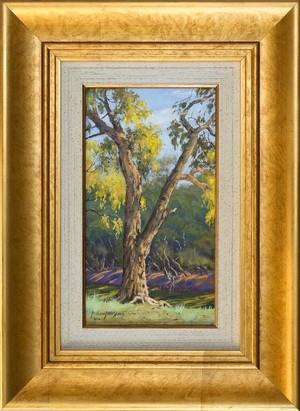Darling River Tree Study 3