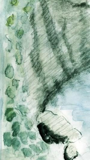 Tilden Park Sketch