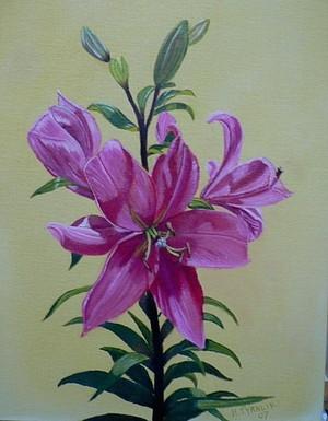 Flower from the Garden