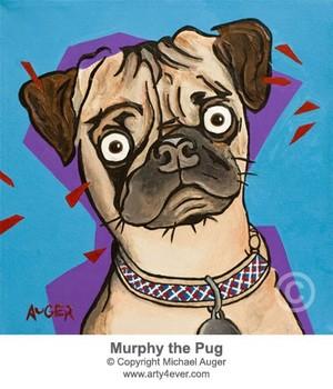 Murphy the Pug