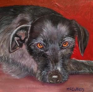 Ruby the Lurcher