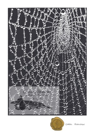 CJ Spider's Web with Water Droplets