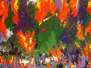 Forest fire 2