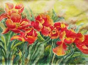 Watercolor Series 241 (Tulips)