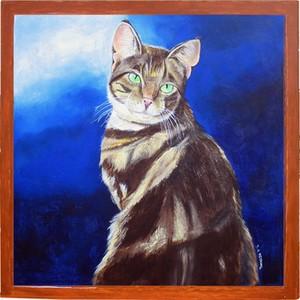 Cat Portrait by the Window