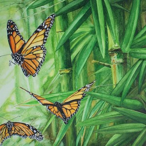 Bamboo butterflies