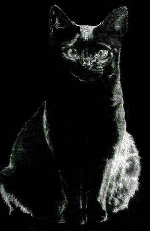 Witches Familiar