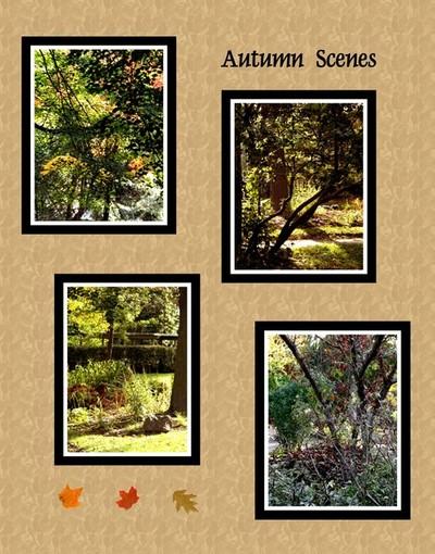 Autumn Scenes Collage