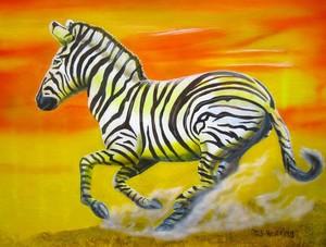 Zebra Kicking up Dust
