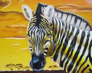 Zebra overlooking Sunset