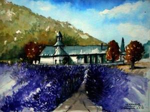 Senanque (Provence-France)