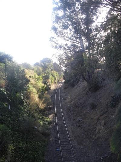 Trian Tracks