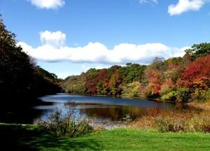 Alcott's Pond in October