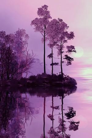Purple Forst