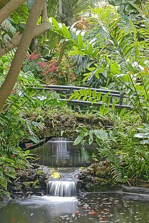 Two Waterfalls in Sunken Gardens