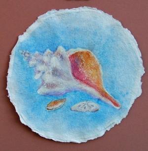 Conch Shell Watercolor 1
