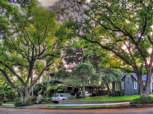 The Puthuff Homes; Eagle Rock California