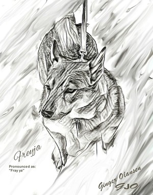 Drawing Sketch