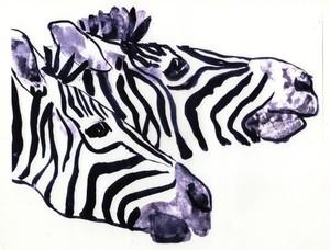 Zebra Twins