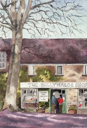 Ballymaloe Shop 2