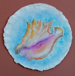 Conch Shell Watercolor 2