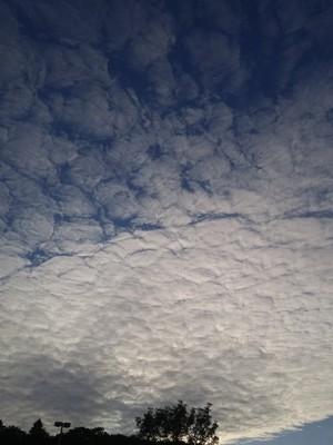 cloud forms