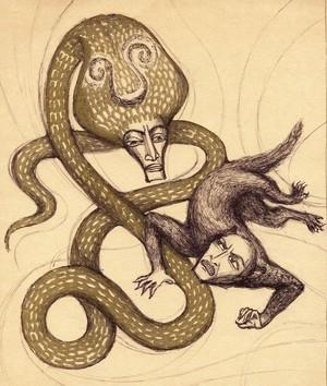 The revenge of Cobra