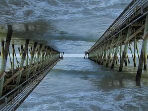 Altered Ocean