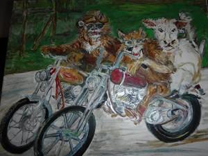 Animal Comedy