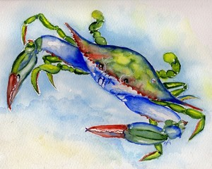 Tybee Blue Crab watercolor