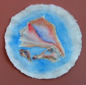 Conch Shell Watercolor 3