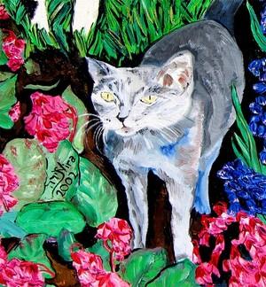 Grey Cat In The Garden