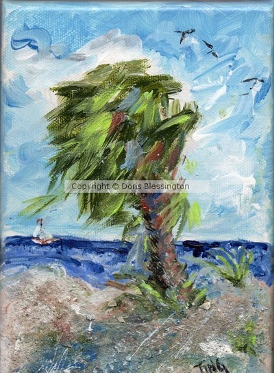 Tybee Palm mini series #1