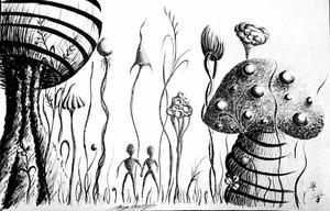 You and Me among Shrooms