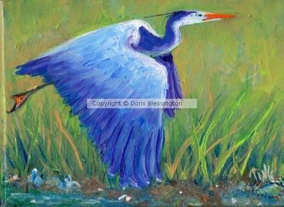 Great Blue Heron Mini series #2