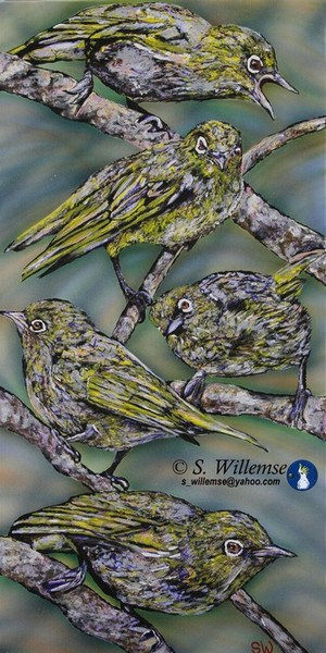Witoogies Art Australian Birds Susan Willemse