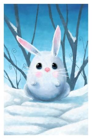 Mr Snow Bunny