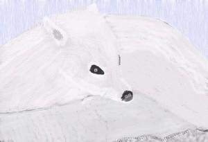 Arctic Fox 2 O720a