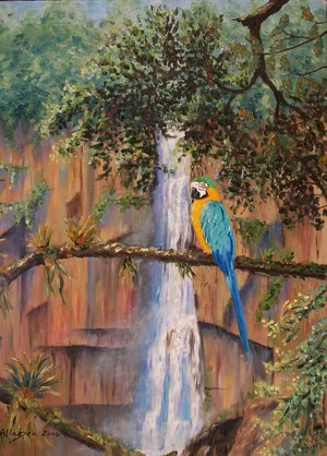 Jungle Macaw