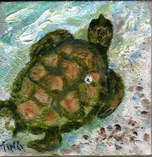 Tybee Beach Turtle