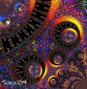 Sunspots 3