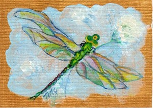 Dragonfly & Dandelion