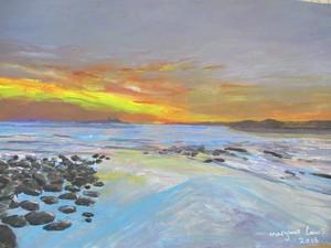 northumbrian coast