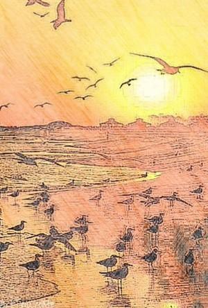Postcard Sunrise.